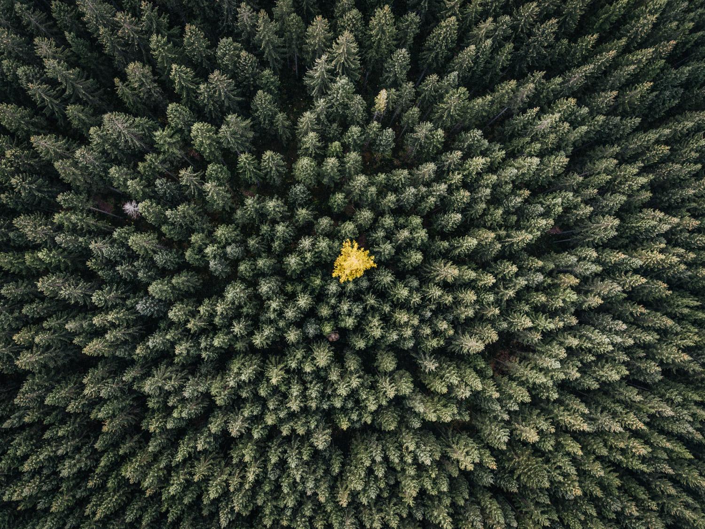 Naturjuwele | Natur- und Geopark Steirische Eisenwurzen