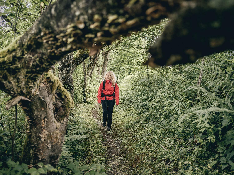 Flora & Fauna | Natur- und Geopark Steirische Eisenwurzen