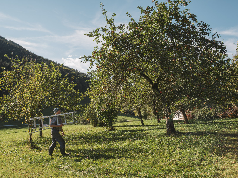 Nationalpark Gesäuse Jaglbauer Com | Natur- und Geopark Steirische Eisenwurzen