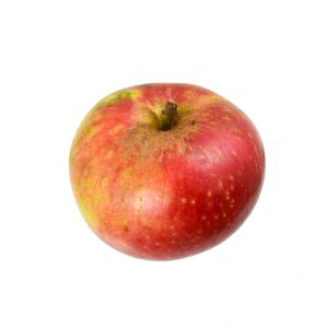 Groreiflinger Eckapfel Stiel