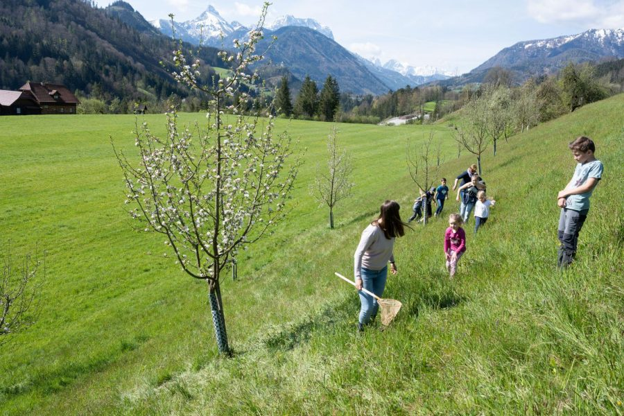 Copyright: Heinz Peterherr mit Unterstützung vom Land Steiermark data-fancybox-group=